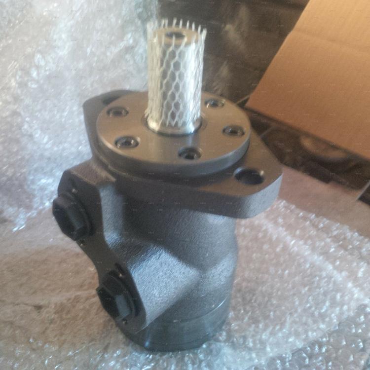 hydraulic motor1