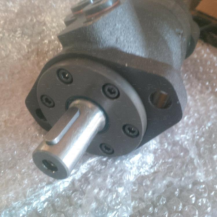 hydraulic motor3