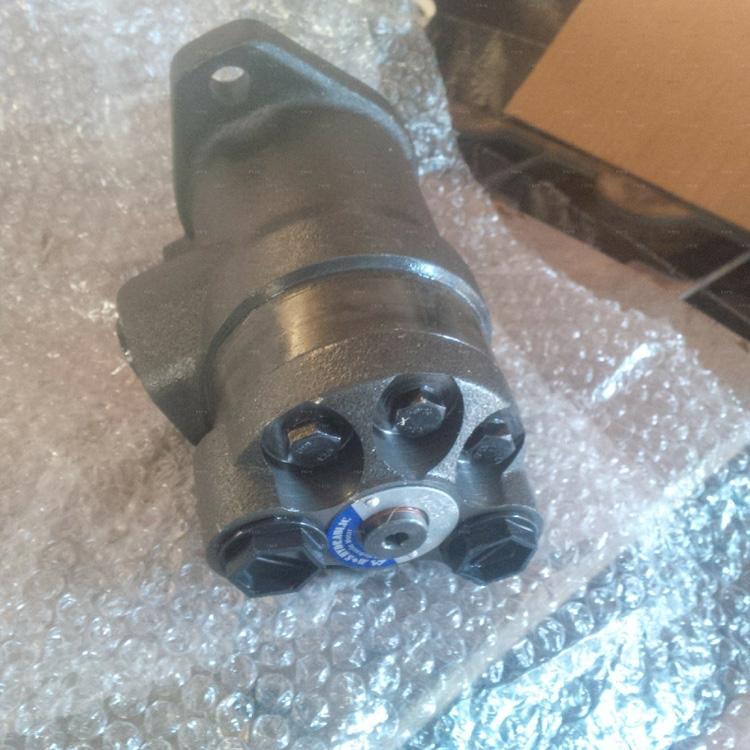 hydraulic motor4